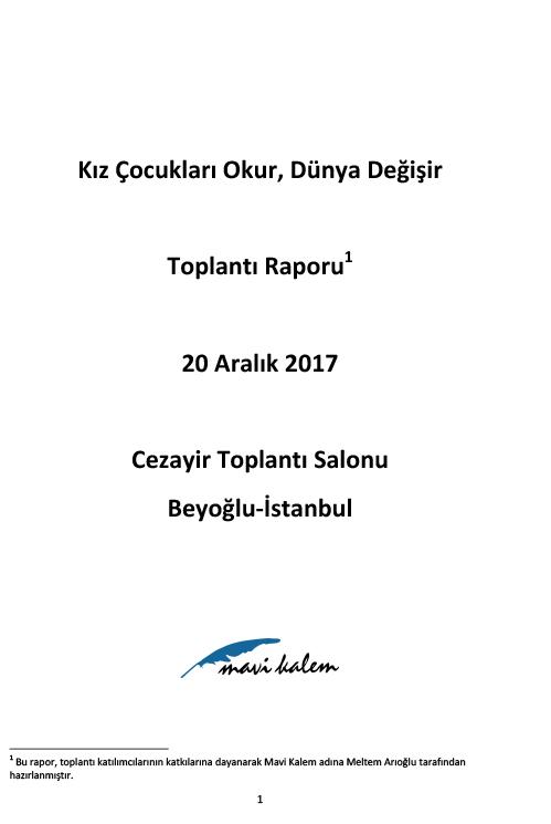 20aralik2017rapor